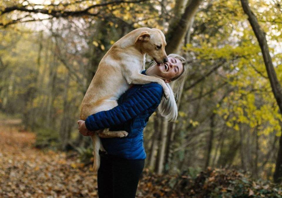 Boala de câine care poate infecta oamenii