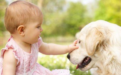 40 de motive pentru care orice copil ar trebui să crească alături de un câine