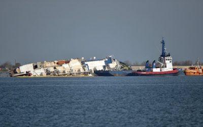 ANSVSA: Cadavrele oilor din nava eşuată nu pot reprezenta o sursă de contaminare cu antrax a apei sau a mediului